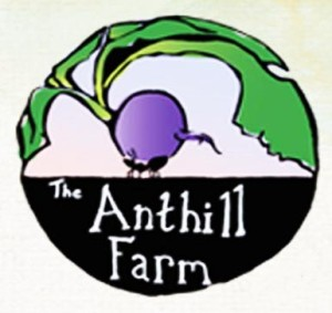 anthill farm logo