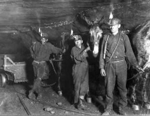 MinersMule